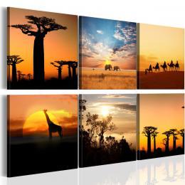 Murando DeLuxe Africké krajiny  - zvìtšit obrázek