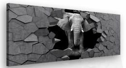 InSmile ® Moderní obraz na zeï - slon v kameni Velikost  90x60 cm