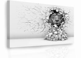 InSmile ® Luxusní obraz - lev ve stìnì