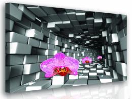 InSmile ® Moderní obraz - orchidej Velikost  100x100 cm