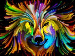 Malvis Obraz na zeï - barevné zvíøe