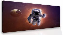InSmile ® Obraz na stìnu - kosmonaut