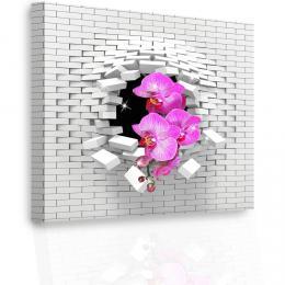 InSmile ® Luxusní obraz - orchidej