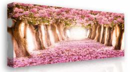 Malvis Obraz na plátnì - kvetoucí stromy