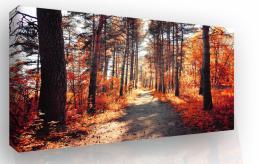 Malvis Obraz na plátnì - podzimní procházka