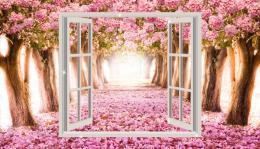 InSmile ® Obraz - výhled do rozkvetlých stromù