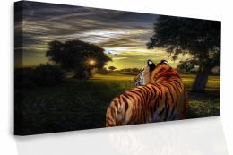 InSmile ® Obraz na plátnì - Tygr
