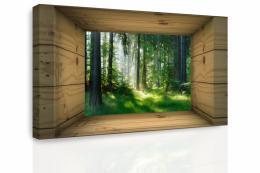 Malvis Obraz - Okno do lesa