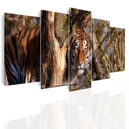 InSmile ® Vícedílný obraz - Èíhající tygr