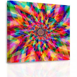 Malvis Obraz - Mozaika kvìtu