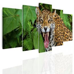 InSmile ® Vícedílný obraz - Jaguár