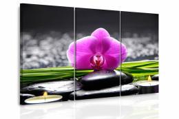 InSmile ® Vícedílný obraz - Orchidej pøi svíèkách