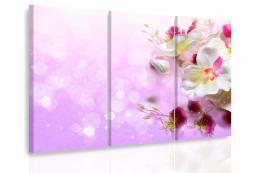 InSmile ® Vícedílný obraz - Orchidej fantazie