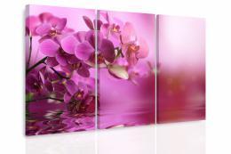 InSmile ® Vícedílný obraz - Orchidej na hladinì