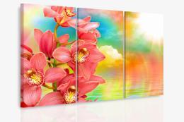 InSmile ® Vícedílný obraz - Orchidej a duha