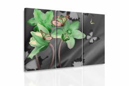 InSmile ® Vícedílný obraz - Zelená orchidej a motýli