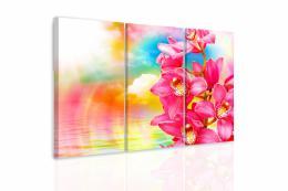 InSmile ® Vícedílný obraz - Orchidej