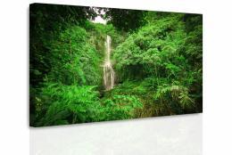 InSmile ® Obraz - Lesní vodopád