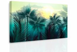 InSmile ® Obraz - Tajemná jungle