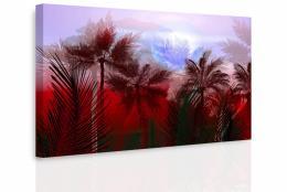 InSmile ® Obraz - Tajemná jungle II.