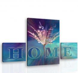 InSmile ® Obraz na zeï - HOME