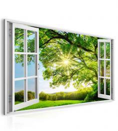 InSmile ® Obraz okno obrovský strom