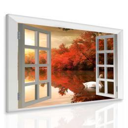 Malvis Obraz Labu� za oknem