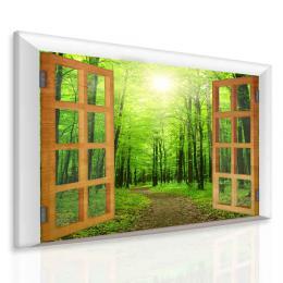 Malvis Obraz paprsek v zeleném lese