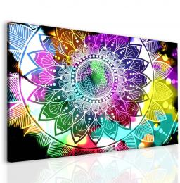 Malvis Obraz barevná mandala