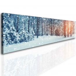 InSmile ® Panoramatický les v zimì