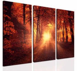 InSmile ® Obraz oranžový les