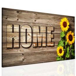 InSmile ® Obraz home sluneènice