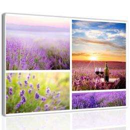 InSmile ® Obraz siesta v Provence