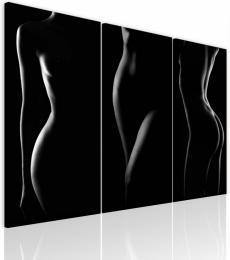 InSmile ® Obraz krása ženského tìla  - zvìtšit obrázek