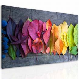 InSmile ® Obraz kouzlo podzimní atmosféry  - zvìtšit obrázek