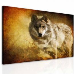 InSmile ® Obraz snový vlk