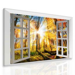 Malvis Obraz okno do pøírody