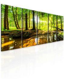 InSmile ® Obraz lesní zátiší