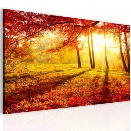 InSmile ® Obraz podzimní záøe