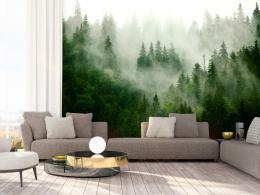 Murando DeLuxe Fototapeta Zelený les v mlze