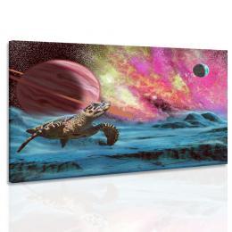 InSmile ® Obraz želva z vesmíru
