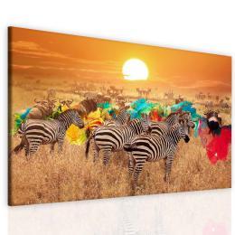 Malvis Obraz kouzlo Afriky
