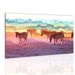 InSmile ® Obraz zebry v západu slunce
