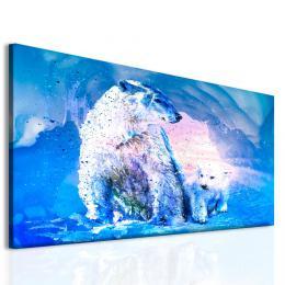 InSmile ® Obraz lední medvìdi