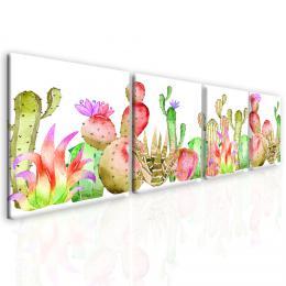 InSmile ® Obraz barevné kaktusy