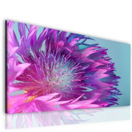 Malvis Obraz fialový kvìt