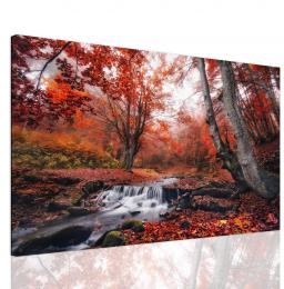 InSmile ® Obraz èervené stromy