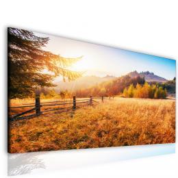 InSmile ® Obraz lesní palouk  - zvìtšit obrázek