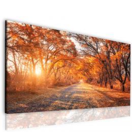 InSmile ® Obraz podzim v aleji