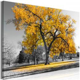 Obraz podzim v parku - žlutý - 30x20 cm - Murando DeLuxe